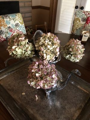 Landcastle Rose by Poole Silver Teapot and Coffeepot for Sale in Webster Groves, MO