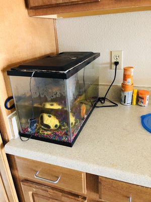 Fish tank for Sale in Kerman, CA