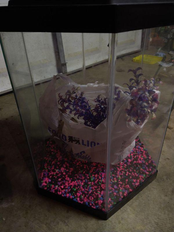 Octagon Fish tank