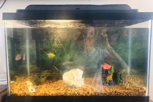 Fish tank 10 gallons with 4 fishes & accessories for Sale in Queens, NY