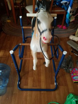 Ridding Horse for Sale in Columbus, OH