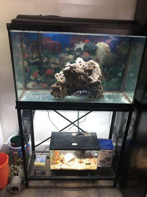 29 Gallon Aquarium for Sale in Phoenix, AZ