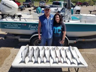 Lake Whitney Striper Fishing Trips for Sale in Whitney,  TX