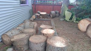 Free Fir firewood rounds for Sale in Edmonds, WA