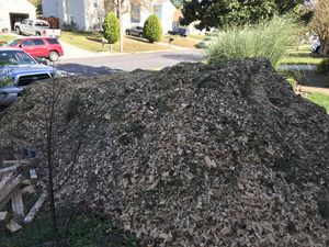 Free wood chips for Sale in Virginia Beach, VA