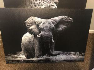 Animal Canvas Portrait Art for Sale in Fresno, CA