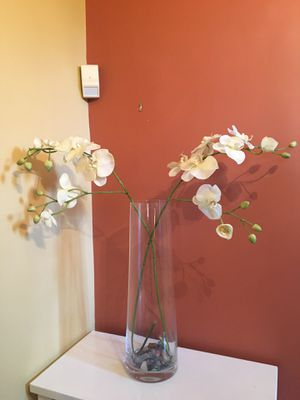Crate + Barrel Tall Glass Vase + Flowers for Sale in Newton, MA