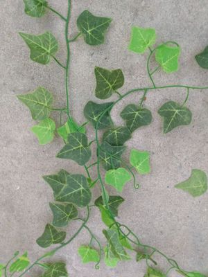 """Fake Ivy Five Strands 84' to 94"""" Long for Sale in Whittier, CA"""