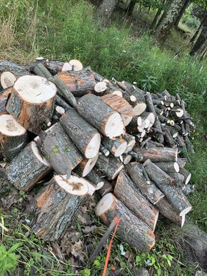 Free wood for pick up for Sale in Johnson City, NY