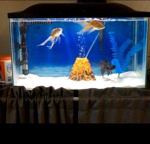 Fish tank for Sale in Arlington, TX