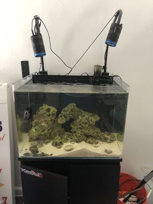 Saltwater fish tank for Sale in Los Angeles, CA
