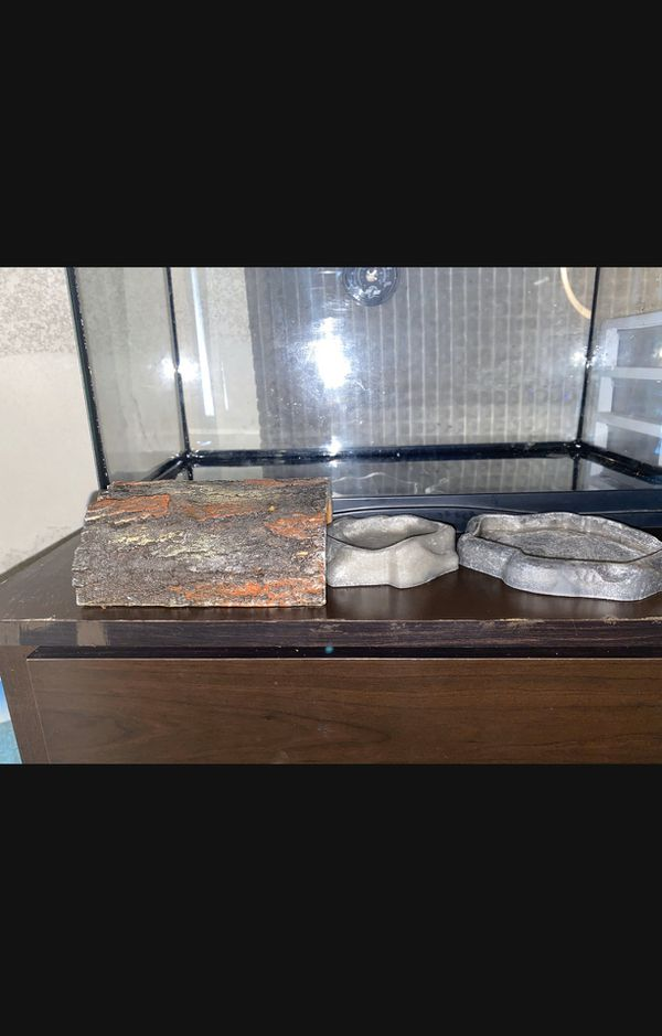 10 gallon reptile tank with everything included