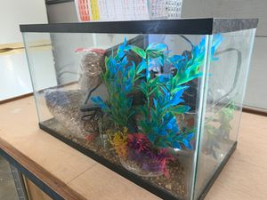 ////// FREE FISH TANK 5-10 gallon \\\\\\ for Sale in Yorba Linda, CA