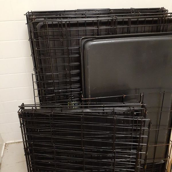 Dog cages multiple sizes