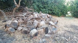 Firewood free for Sale in Pittsburg, CA