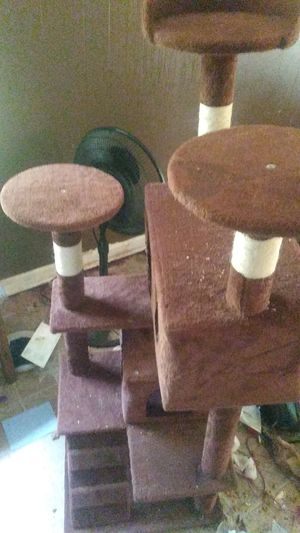 Kitten play house for Sale in Decatur, GA