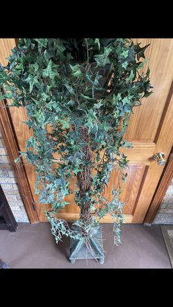 Lovely topiary style tree for Sale in Hinsdale,  IL