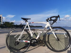 Size 60 Light Aluminum Road Bike. 14 Speeds! Assembled & Available Today! for Sale in West Palm Beach, FL