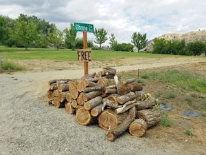 FREE firewood for Sale in Manson, WA