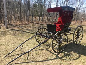 Vintage horse drawn carriage. Museum quality for Sale in Tustin, MI