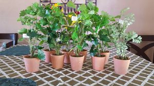 Artificial Small Plants for Sale in Chino, CA