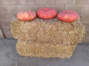 Hay stacks (2) & pumpkins for Sale in Pomona, CA