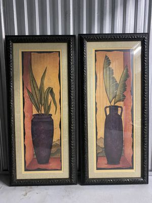 Matching Plant Frames for Sale in Orlando, FL
