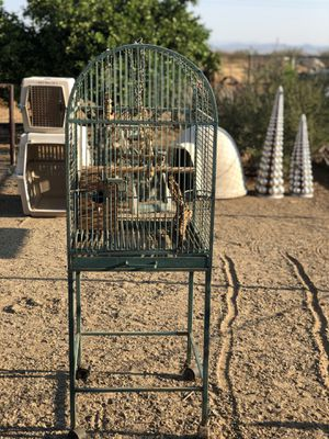 Bird cage for Sale in Buckeye, AZ