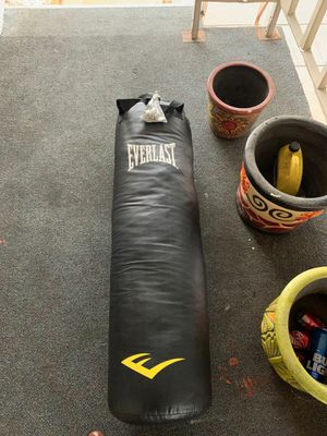 Everlast 100 pound heavy weight punching bag (brand new) for Sale in Riverside, CA