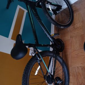 Mens Schwinn Thick Tires 29 size for Sale in Greenbelt, MD