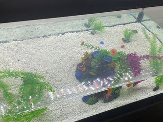 Fish tank 🐠 75 Gall for Sale in Indianapolis,  IN