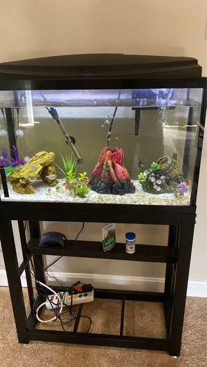 29 gallon Fish tank set up without stand for Sale in Franklin, MA
