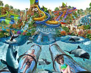 Seaworld Aquatica San Diego Tickets for Sale in San Diego, CA