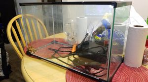 Fish or reptile tank 10 gallons for Sale in Portland, OR