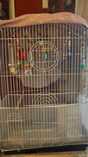 2 parakeets and a cage with toys. for Sale in Surprise, AZ