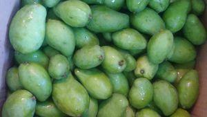 Mangos recien cortados for Sale in Los Angeles, CA