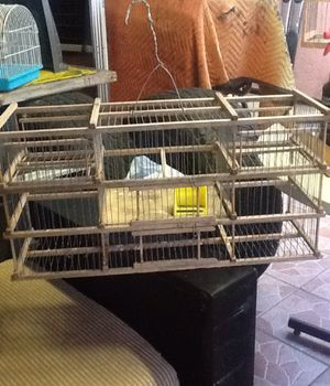 bird cage(trap) for Sale in Hialeah, FL
