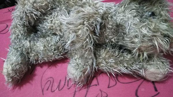 Stuffed animal dog.