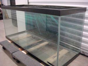 75 Gallon glass aquarium. for Sale in Saint Robert, MO