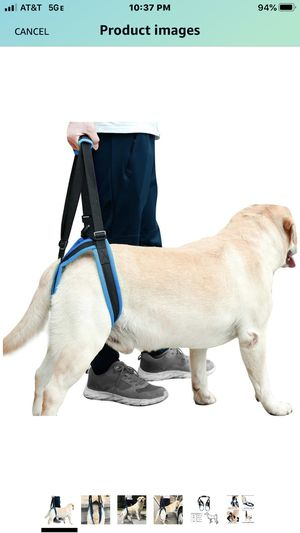 ROZKITCH Pet Dog XL Support Harness Rear Lifting Harness Veterinarian Approved for Old K9 Helps with Poor Stability, Joint Injuries Elderly and Arth for Sale in Las Vegas, NV