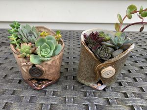 Unique, handmade hanging ceramic pots with succulents, $8 each for Sale in Vancouver, WA