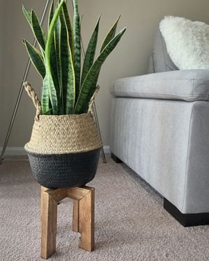 Wooden plant stand - 10'x10' inches. Plant and pot not included. for Sale in Bayonne, NJ