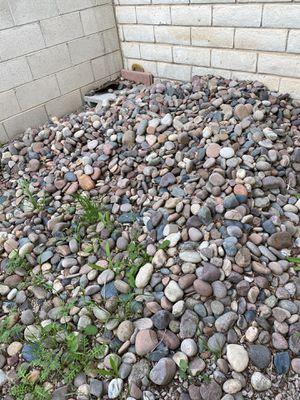 River rocks for Sale in Las Vegas, NV