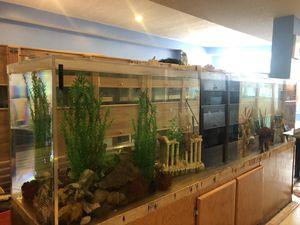 Fish tank for Sale in Hamilton, OH