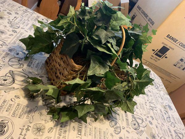 Whicker basket IVY FAKE. Plant