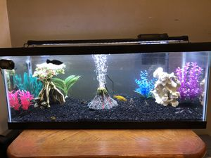 Fish Tank 20 gallon for Sale in Long Beach, CA