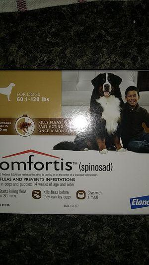 Comfortis Dog Meds for Sale in Lakeland, FL