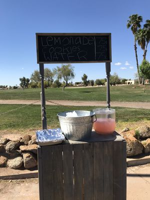 Lemonade stand for sell for Sale in Payson, AZ