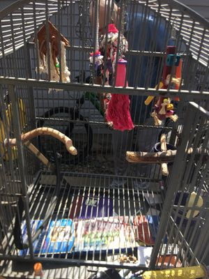 Exotic Bird Cage for Sale in Fairfield, CA