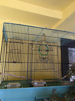 Bird cage ! for Sale in Denver, CO